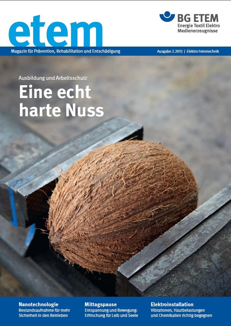 """etem Ausgabe 2: Schwerpunkt """"Berufsanfänger und Arbeitssicherheit"""""""