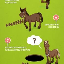 Reiten, Pferde, Gesundheit
