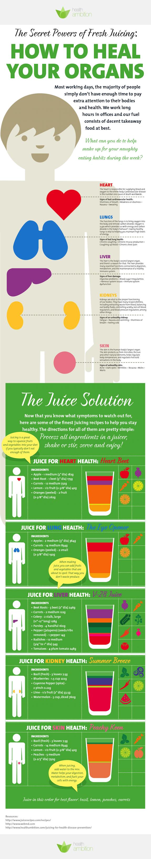 Gesunde ernährung für die Organe