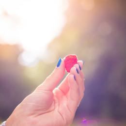 Mit dem CRS® gezielt Empfehlungen zum Theme gesunde Ernährung aussprechen. (Picture: »Colorful Raspberry in a Girls Hand« fotografed by Viktor Hanáček / picjumbo.com)