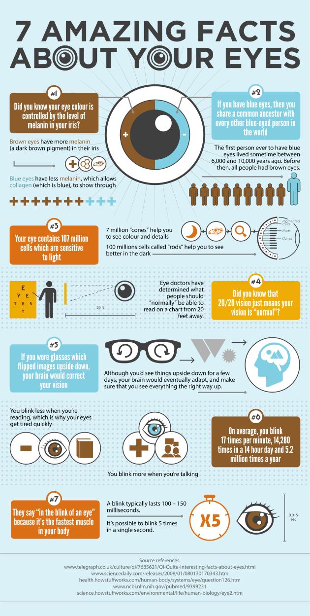 Augen, Infografik, Sehen