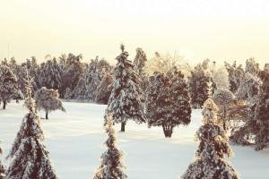 Joggen im Winter – Darauf sollten Sie achten