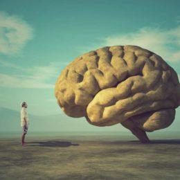 : Mann steht in karger Wüstenlandschaft mit blauem Himmel vor einem großem Stein in Form eines Gehirns.