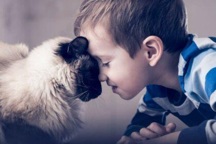 Kleiner Junge und langhaare Katze liegen beiden auf dem Boden und halten ihre Köpfe liebevoll vertraut aneinander.